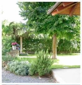 giardino-pozzo